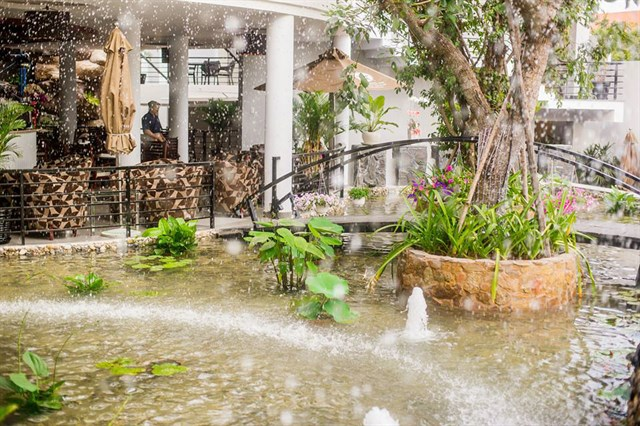 Top cà phê sân vườn đẹp tại 7 Quận TP. Hồ Chí Minh