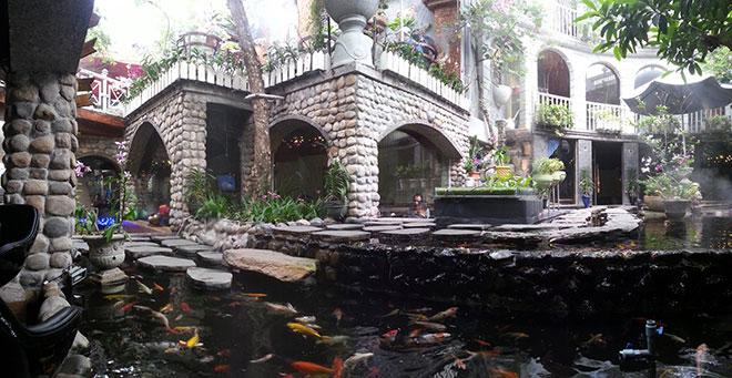 Top cà phê sân vườn đẹp tại 7 Quận TP. Hồ Chí Minh 24