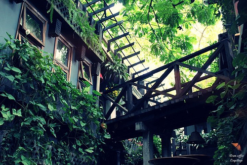 Top cà phê sân vườn đẹp tại 7 Quận TP. Hồ Chí Minh 31