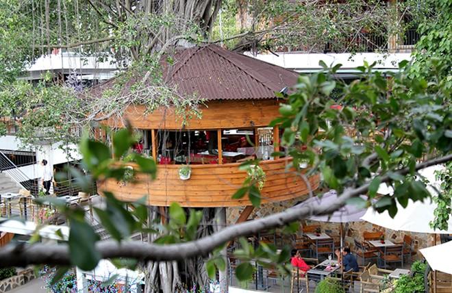 Top cà phê sân vườn đẹp tại 7 Quận TP. Hồ Chí Minh 27